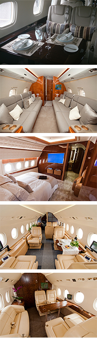 Private jet interior design green bed
